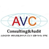 """""""AVC consulting and audit"""" LLC"""
